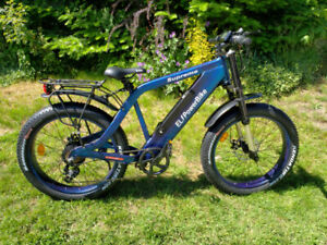 Amazing Electric Bike (New and Deal)