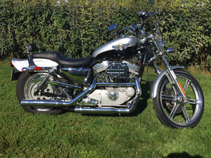 Harley Davidson Sportster XL 883 *Négociable*