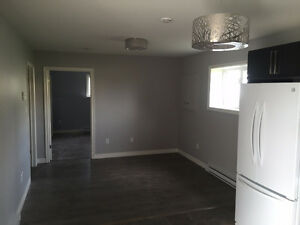 Beautiful Apartment available Feb 1st