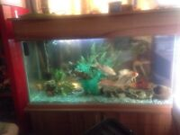 Here's a lovely custom 🐟 🐟 fish tank also included is a sump and flowing water wear 🐟🐟🐟🐟🐟