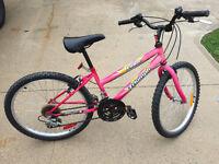 """Triumph Mountain Bike (24"""" wheel)"""