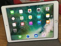 iPad Pro 9.7 inch 128 G Silver Wifi