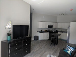 Apartment Sublet - Jan 1st to Apr 30th 2019