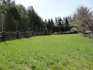 1/2 Acre 12' Tall Fenced Area for Rent in Formosa -Monthly Rent