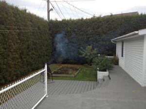 Maison à vendre sous l'évaluation de la ville Saguenay Saguenay-Lac-Saint-Jean image 5