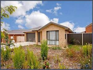 Friendly housemate wanted Macgregor Belconnen Area Preview