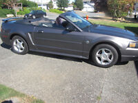 Limited 40th Anniversary Mustang Convertible