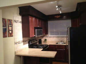 Entire 1 bedroom Apartment - Ideal for Lakeshore Humber Students