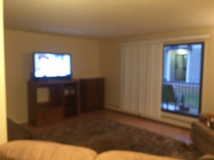 Roommate needed for November 1st. Fully Furnished.