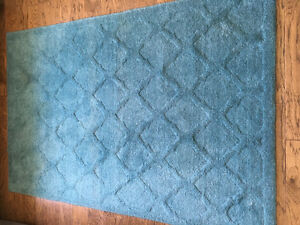 Pier 1 Imports Teal Blue Area Rug and Cushions