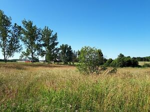LOVELY 1/2 ACRE LOT ON CUL-DE-SAC