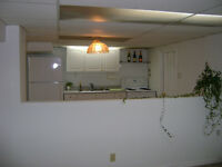 Clean, Quiet, Large Open Concept Living/Dining Combo