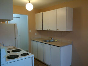 Spacious 2 Bedroom Apt for Rent