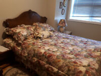 Antique double bed comforter and accessories