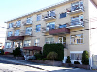 APPARTEMENT À LOUER BEAU & GRAND 3 ½ MONTREAL-NORD (4040-1, coin