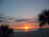 FL Beach Front 1 Bedroom Between Clearwater and St. Petes (2105)