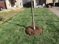 FREE ESTIMATES FALL YARD CLEANING & LANDSCAPE SERVICES 324-3659