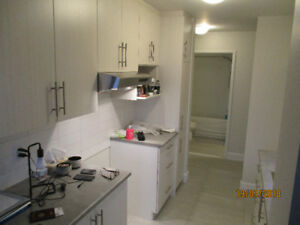 DDO - Premium 4 1/2 w. Washer/Dryer hookups & ALL UTILITIES PAID