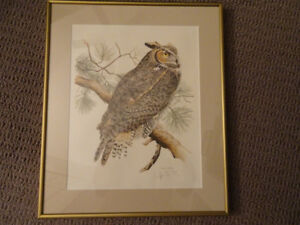 Nature Print Glen M.G. Loates 1970's Great Horned Owl Lithograph