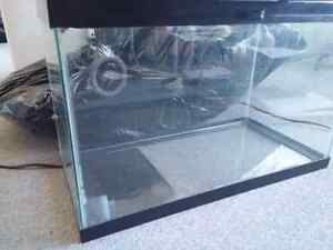 One reptile and one fish tank