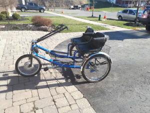 Adult battery powered dual seat trike