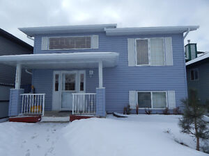 """CLAIRVIEW"" IMMEDIATE RENTAL 3 BDRM 2 BATH BI-LEVEL HOME"