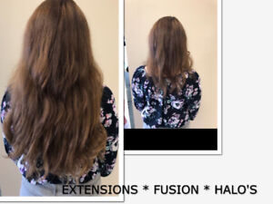 HAIR EXTENSIONS * HALO (Original 1st to Sell Halo's)