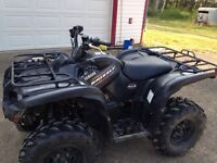2010 grizzly 700 for sale
