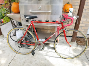 Ompax Mont royal 10 speed road bike