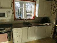 Kitchen cabinets and / or granite counter