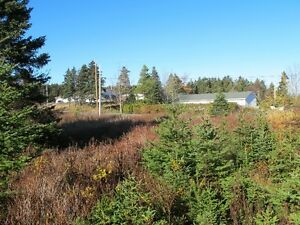 For sale 1.84 acres of land in lovely in Chapels Cove, NL St. John's Newfoundland image 3