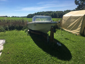 Evinrude With Trailer Kitchener / Waterloo Kitchener Area image 2