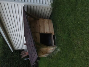 Very solid and well made dog house