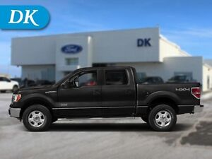 2014 Ford F-150 FX4 EcoBoost with Leather, Sunroof & Nav!
