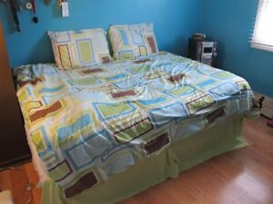 Comforter - double with pillow cases, skirt and curtains