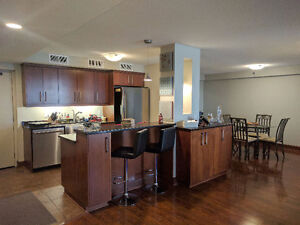 Fully furnished penthouse downtown