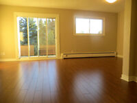 Nice 3 bdrm, August 1, STUDENTS WELCOME, Stanley Park