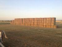 Custom Haying, cutting, baling, stacking