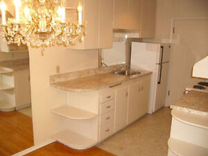 Beautiful and Trendy 1BD unit Available for Rent