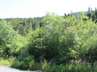 155-161 COUNTRY PATH ROAD, LONG POND  CBS