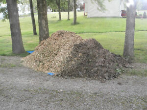 free wood chip free mulch chips from my wood chipper