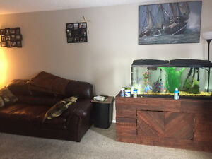 Single Room for rent in Edson Close to Downtow
