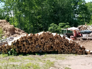 Peeled Cedar Posts ( Summer Blowout )