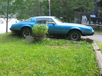 Firebird project, more car than project