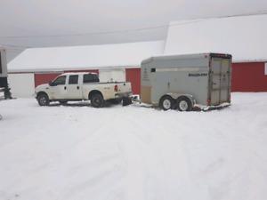 Livestock Hauling Transportation Services