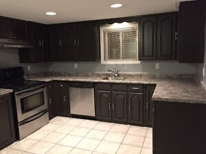 Beautiful New and Spacious 1 Bedroom in Tecumseh