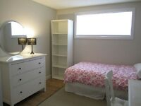 Newly Renovated, Close to Downtown and SAIT