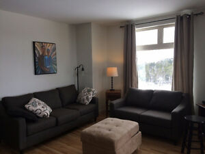 Gorgeous 2-bedroom ready for you July 1--sublet or yearly lease