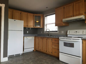 4 bedroom HOUSE FOR RENT near UdeM on ELMWOOD Dr.
