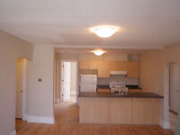 VERY LARGE Newly renovated 3-bdr (furnished option)